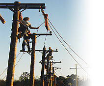 install and maintain the overhead distribution and transmission lines